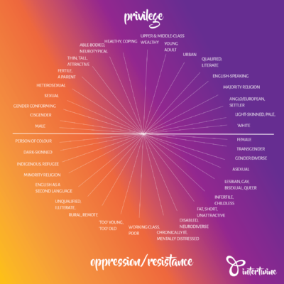 "A diagram with the words 'privilege' at the top and 'oppression/resistance' at the bottom. There is a line across the centre horizontally to divide the two. In the top half are words like 'white', 'heterosexual', 'able-bodied'. On the bottom half are words like ""person of colour', 'lesbian, gay, bisexual, queer' and ''disabled'."